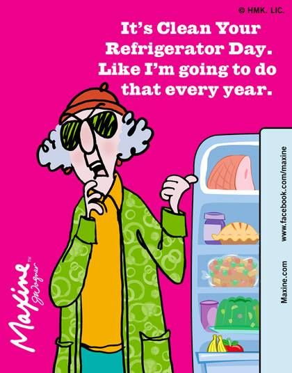 25 Unique Refrigerator Cleaning Ideas On Pinterest Car