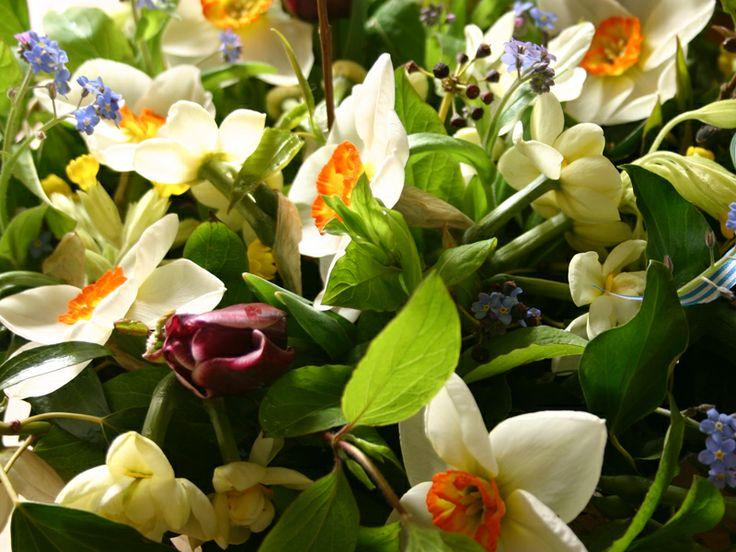 78 best seasonal wedding flowers spring images on pinterest early spring seasonal flowers tulips forget me nots narcissi british mightylinksfo
