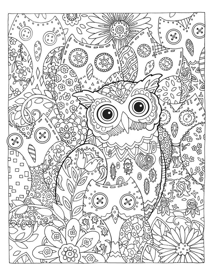 "Creative Haven Owls Coloring Book by Marjorie Sarnat, ""Hidden Hoots"""