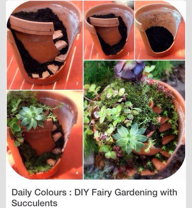 DIY Fairy Succulent Garden #Home #Garden #Trusper #Tip