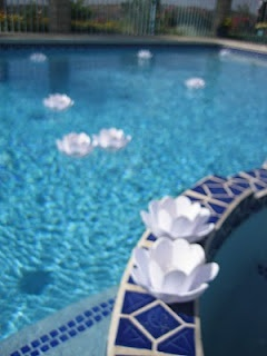 Floating pool candles island chic birthday pinterest pool candles pools and kevin o 39 leary for Floating candles swimming pool wedding