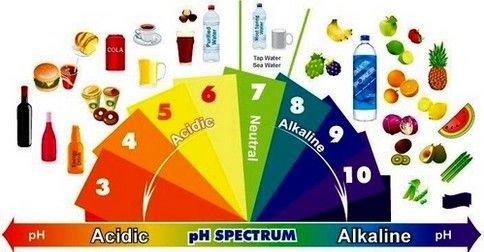 Ako zistiť či máte prekyslený organizmus a ako vyrovnať hladinu pH