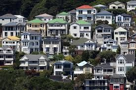Image result for wellington city gardens
