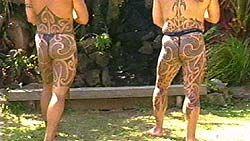 Traditional Maori puhoro