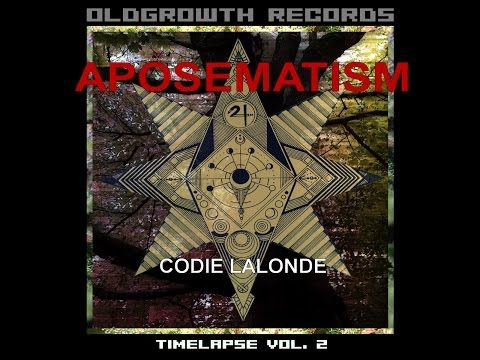Methismacs - Aposematism Codie Lalonde | A/V Revolution Music #experimental #music