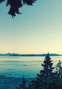 Seafood Road Trips | Seattle Met
