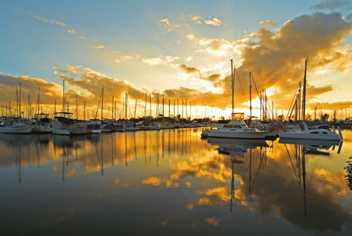 Manly Harbour #sunset #boats #marina #bayside