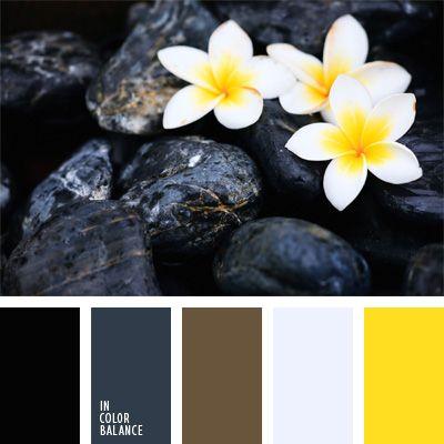 color amarillo, color asfalto mojado, color piedra caliente para SPA, color planta exótica, combinaciones de colores, elección del color, negro y amarillo, negro y gris, negro y marrón, selección de colores para el diseño, tonos grises.