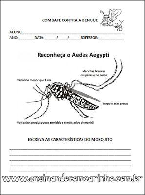 Ensinando com Carinho: Atividades de combate ao mosquito aedes aegypti