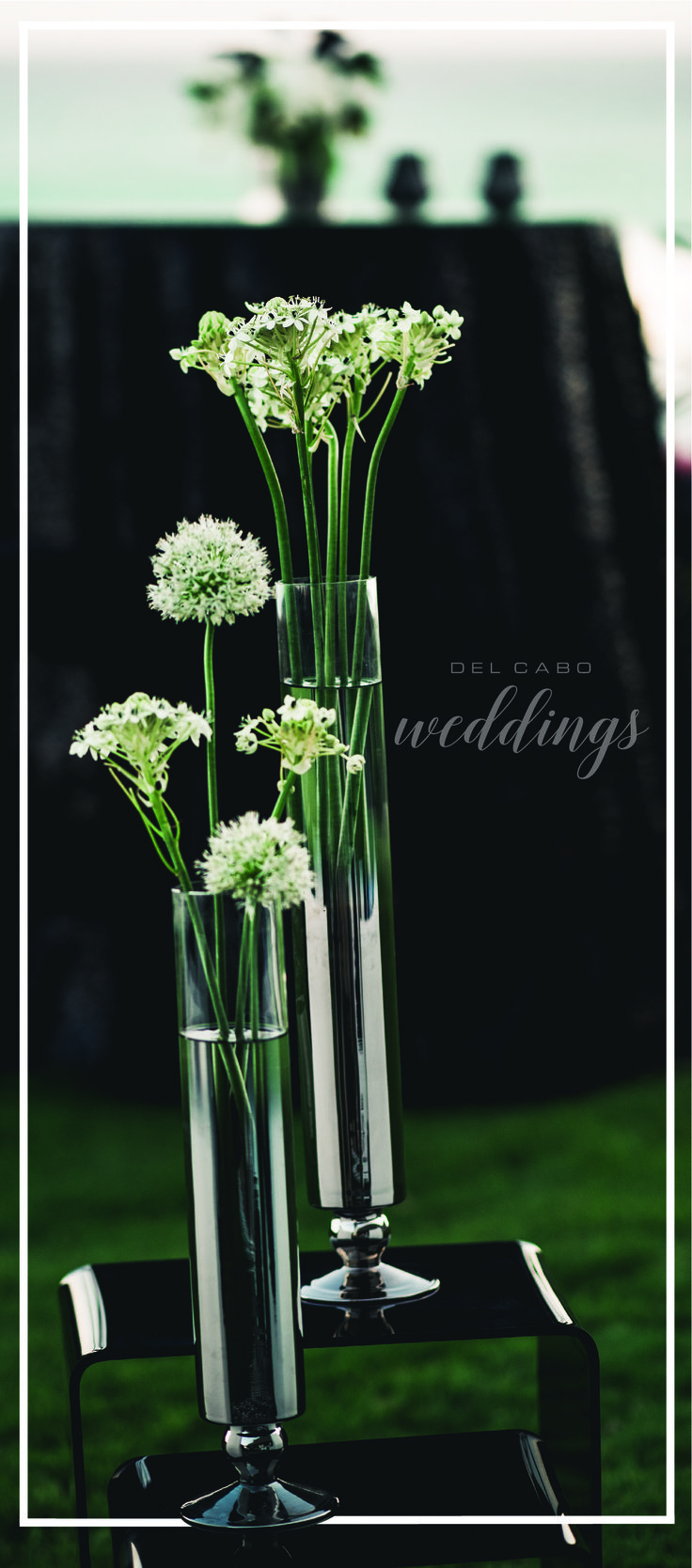 Floral arrangements ideas your modern chic wedding using colors that contrast. Check out our website!