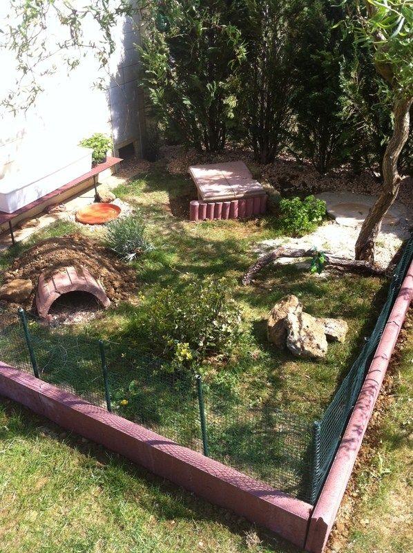 Best 25 reptile room ideas on pinterest reptile - Faire une rocaille dans son jardin ...