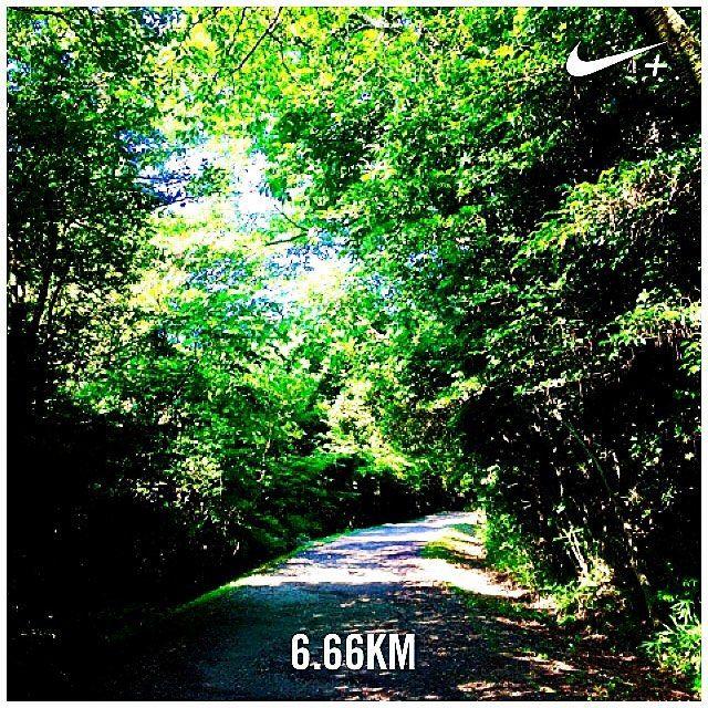 【takemj1208g】さんのInstagramをピンしています。 《Early morning run in the woods on the 1st day of summer holidays. 今日からやっと休みに突入〜。初日が肝心という事で5時に起きてゾロ目ラン。少し暑さも一段落かな〜という感じです。暴飲暴食注意。 #nike #nikeplus #nikeflyknit #nikerunning #run #running #run #morning #jogging #woods #holiday #holidays #ランニング #朝ラン #早起き #ジョギング #ナイキ #ナイキプラス #ナイキランニング #森》