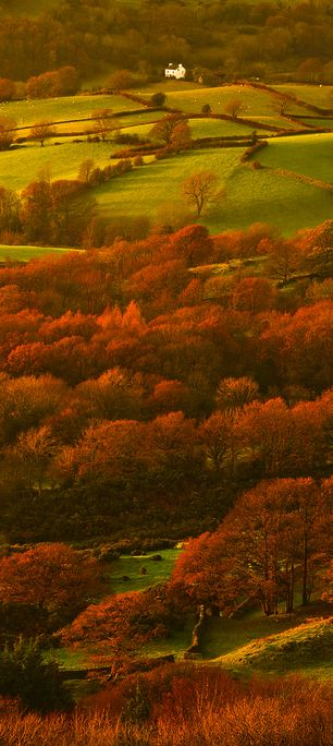 Lyth Valley, Lake District, Cumbria, England                                                                                                                                                                                 More