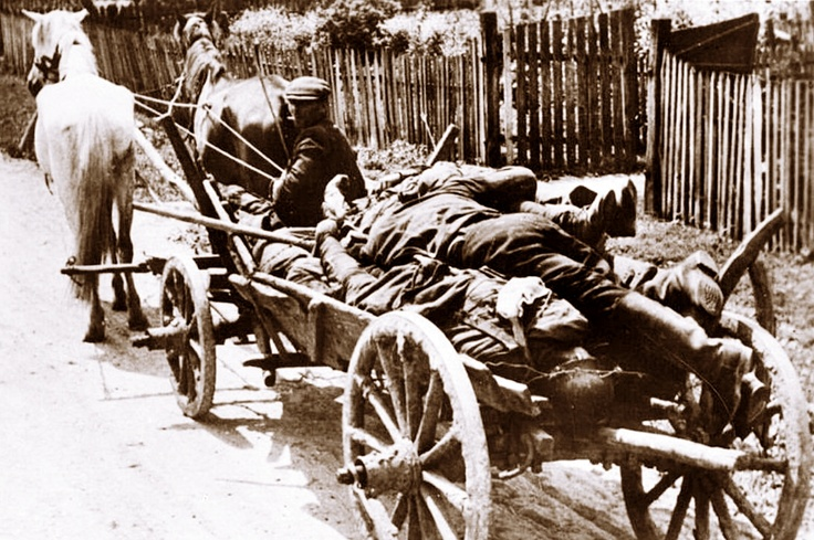 Russian villager collects dead bodies irrespective of side, summer 1942, Southern Front.History'S Most Wwii