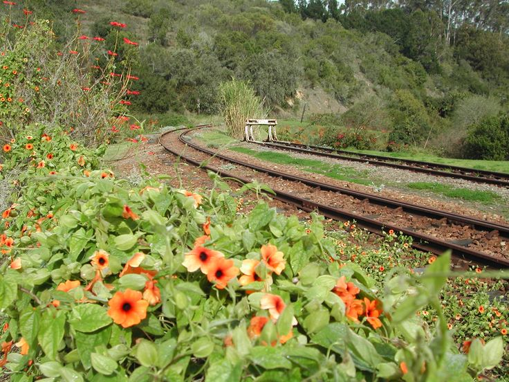 Sedgefield, Garden Route, South Africa. #Sedgefield #GardenRoute