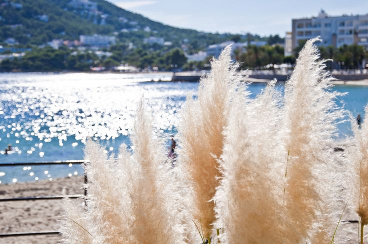 Santa Eulalia has Clear, shallow waters, which make it the perfect place for kids and snorkeling plus the resort-style feel of the town evokes that authentic 'on holiday' vibe all-year-round.