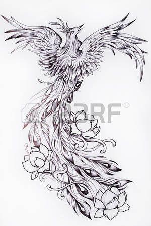 Résultat De Recherche D Images Pour Dessin Mandala Phoenix