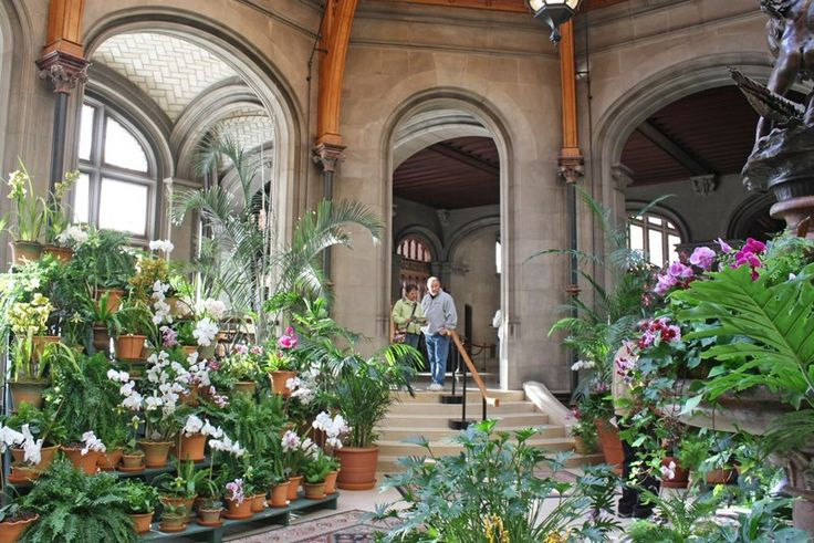 The beauty of the gardens indoors at Biltmore House in the Winter