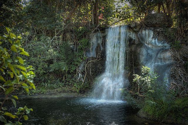 FREEPORT - Garden of the Groves - four cascading waterfalls, exotic birds, alligators, and numerous paths surrounded by lakes