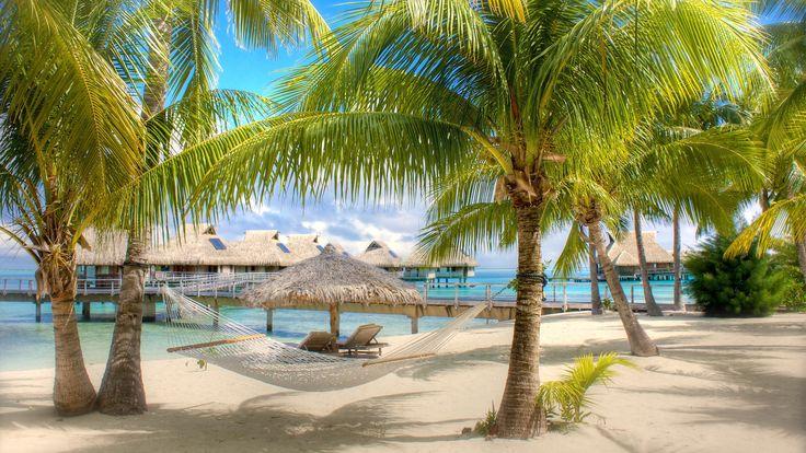 Доминикана, Пунта Кана 102 130 р. на 15 дней с 02 сентября 2016  Отель: RIU NAIBOA 4*  Подробнее: http://naekvatoremsk.ru/tours/dominikana-punta-kana-257