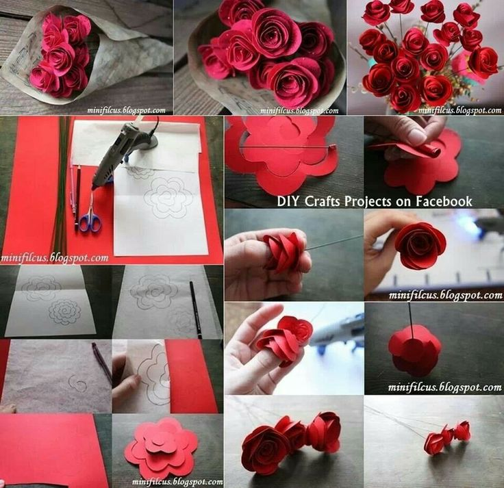 Rolled up paper rose d i y pinterest paper paper for Diy paper roses step by step