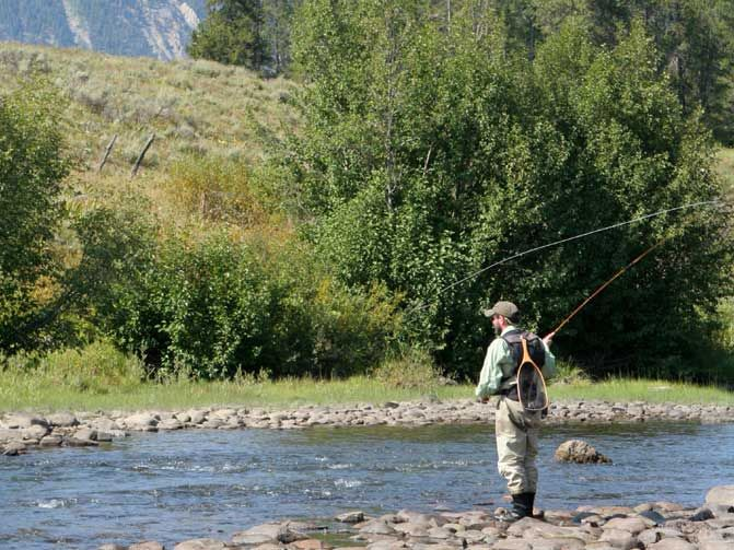 Pin by yawannagocamping on crested butte car camping for Camping and fishing in colorado