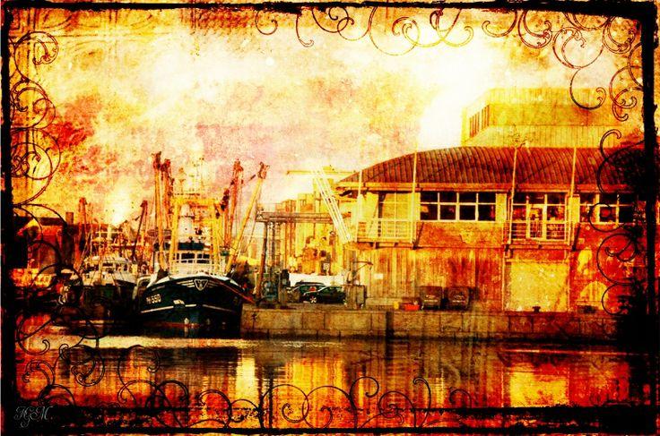 Harbour  Photo courtesy of Gareth Jones