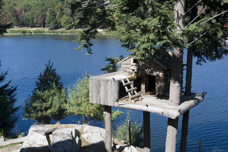 Dům v korunách stromů s výhledem na jezero.