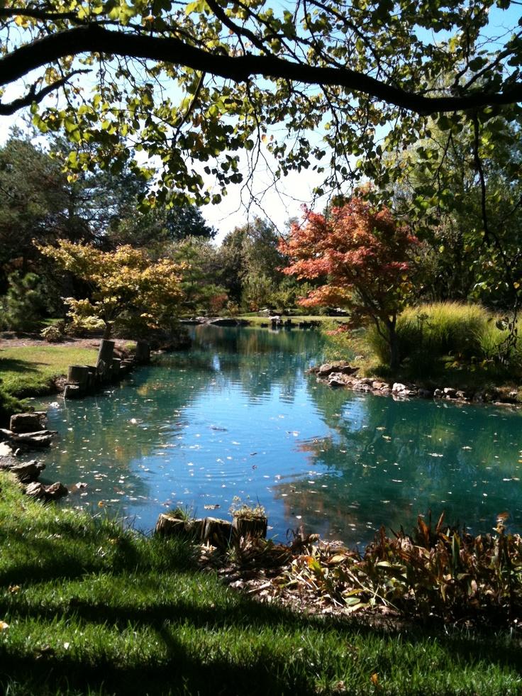 Japanese Stroll Garden. Close Memorial Park. Springfield, MO ...