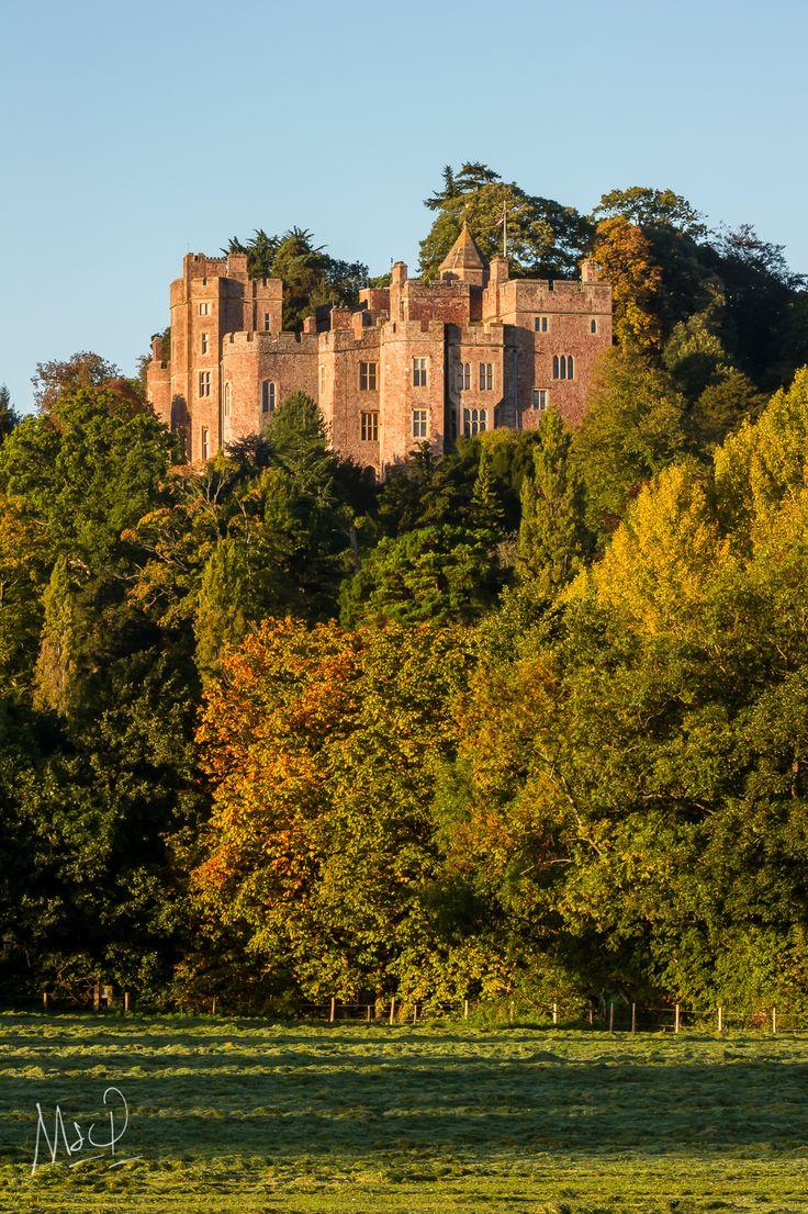 Dunster Castle in the Autumn Sun, #Exmoor.  Photo bt Mark Stothard - Read More http://msp.im/1QmfeKf
