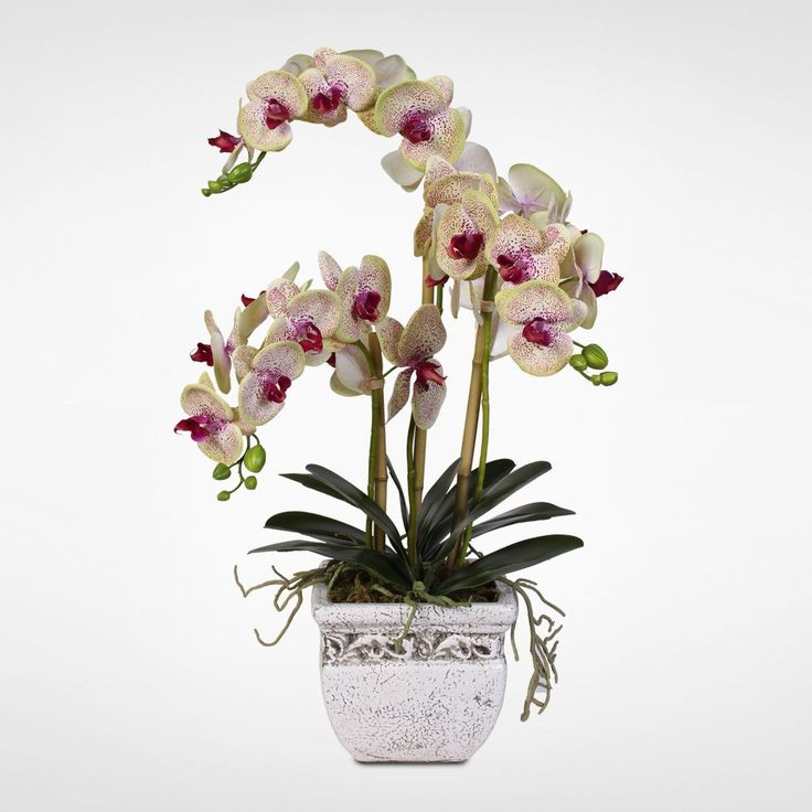 Real Touch Phalaenopsis Silk Orchid Arrangement in a Stone Pot (Phalaenopsis Silk Orchid Arrangement in Stone Pot), White/Purple
