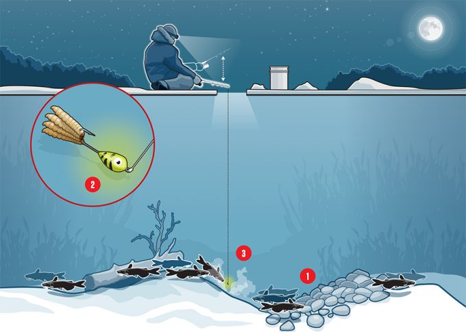 706 best fishing images on pinterest for Ice fishing for catfish