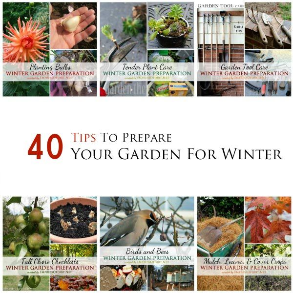 40 Tips from creative gardeners to prepare your garden for winter | curated by empressofdirt.net