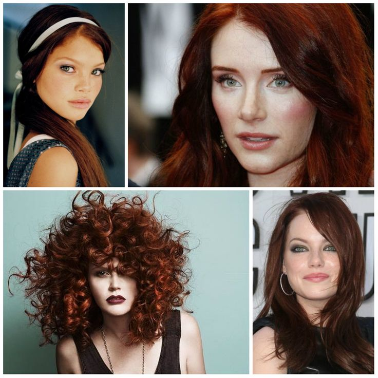 Best Hair Color Ideas Trends In 2017: Best 25+ Mahogany Hair Colors Ideas On Pinterest