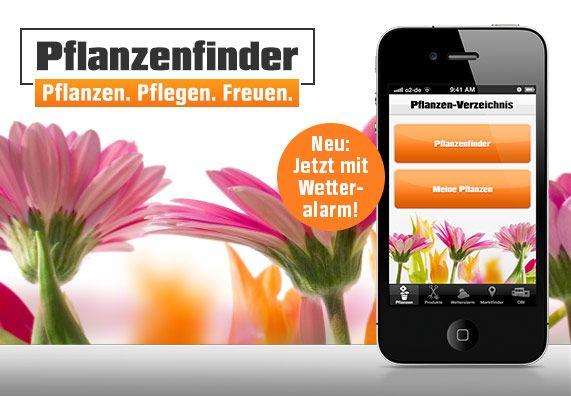 Der OBI Pflanzenfinder ist eine kostenlose App, die dir hilft, ganz individuell Pflanzen für Garten und Wohnung zu suchen und die dich bei der Pflege unterstützt. Jetzt neu mit Wetteralarm.