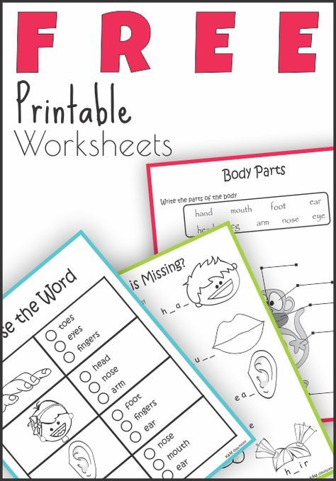 FREE Body Parts Read and Write Worksheets | Students | Worksheets ...