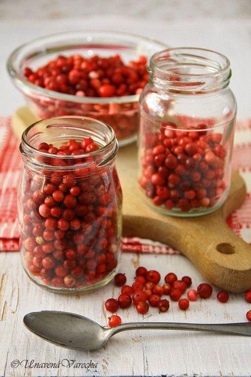 Také máte rádi tyto červené malé plody na malém zeleném keříčku? Jsou nejen velmi hezké, ale i zdravé. V tomto období si vždy najdu trochu...