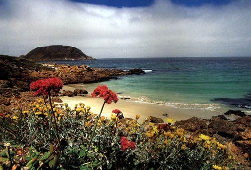 San Miguel Island, Channel Islands, #California #iGottaTravel