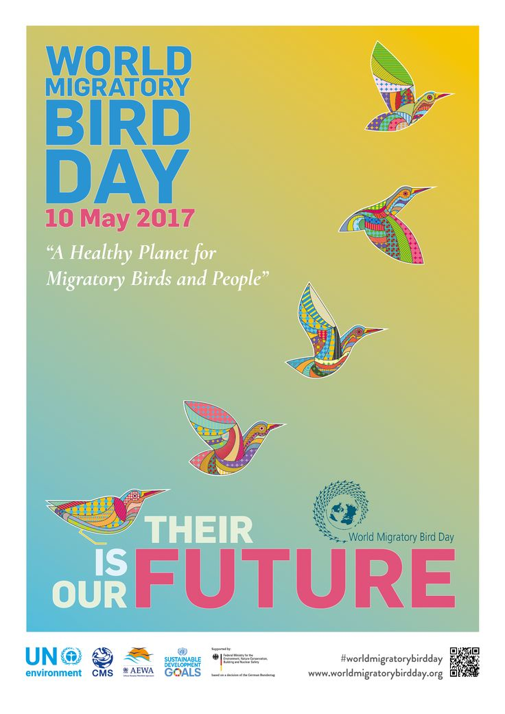 #ourfutureistheirfuture - great slogan for an important day! #birds #migration #biodiversity