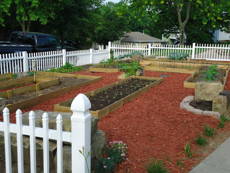 Front Yard Vegetable Garden Ideas 23 best edible yards images on pinterest | front yard gardens