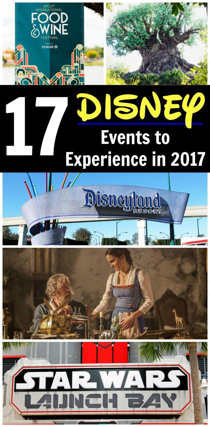 Disney Events in 2017? Yeah, there are going to be a lot of them! From the parks to the movies to merchandise and more, we've got you covered for what's happening with the Walt Disney Company in 2017.