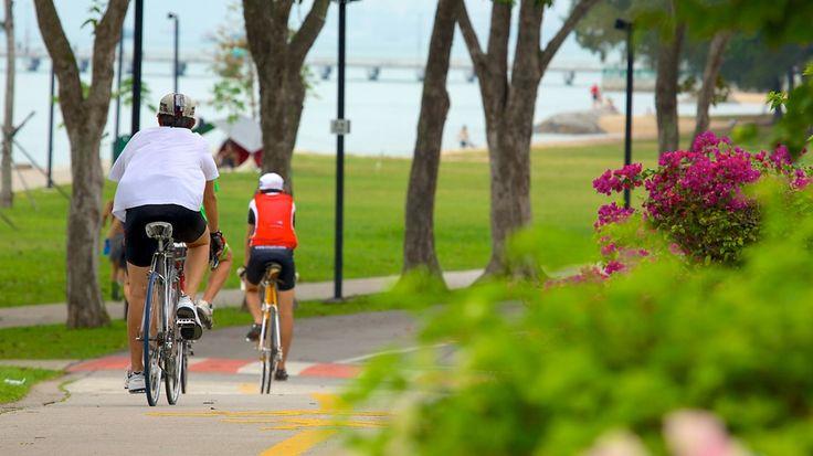Parque da Costa Leste em Cingapura.  Fotografia: Tourism Media.