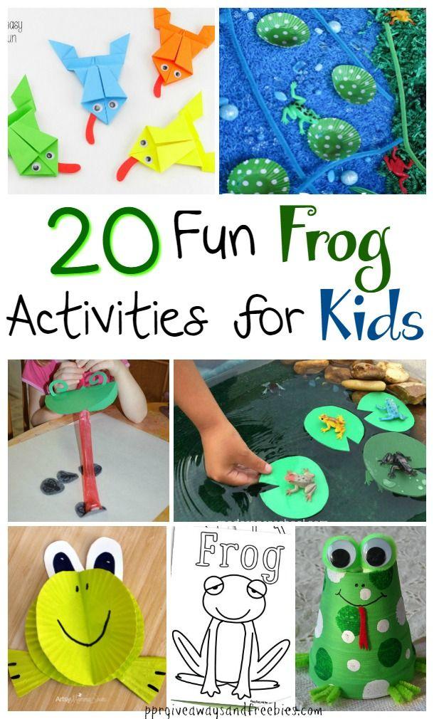 Best 25 Frog Activities Ideas On Pinterest Tadpole Life