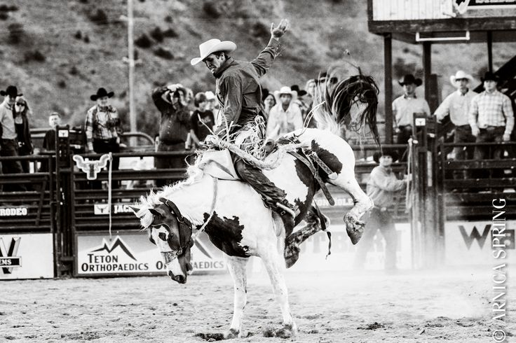 jackson hole 4th of july rodeo