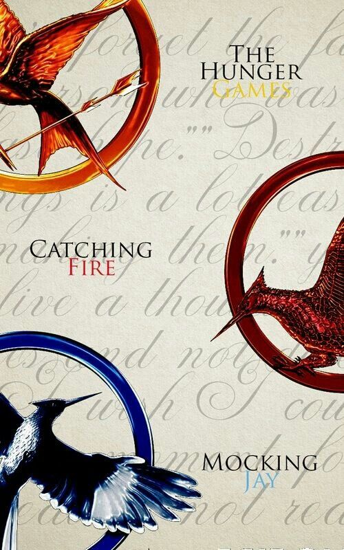 The Hunger Games Trilogy! http://alittlebitofliterature.blogspot.co.uk/2013/08/the-hunger-games-trilogy-review-little.html