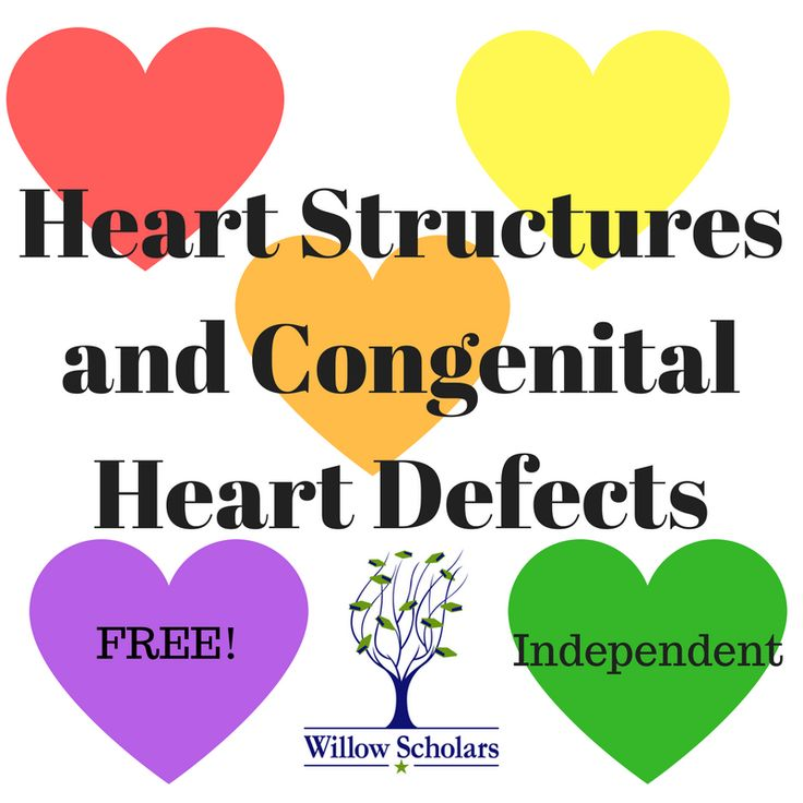 Free until July 31- Heart Structures and Congenital Heart Defects – Willow Scholars. An independent class on the physiology of the heart.