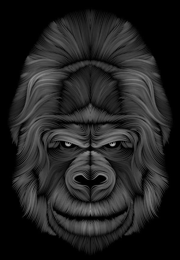 Le gorille by Patrick Seymour, via Behance