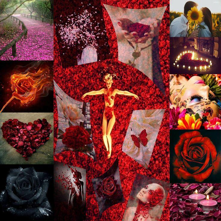 """10.) """"Non sappiamo cos'é l'Amore, nessuno non lo sa, ne te ne io. Solo con questa """"non sapienza"""" possiamo cautamente avvicinarci a esso.  Come strappando i petali del fiore con molta incertezza di """"mi ama – non mi ama"""", arriviamo all'ultimo petalo che ci da la conferma """"MI AMA!"""" – partiamo insieme alla ricerca della nostra propria risposta vera. Durante questo cammino occorrono tutti i petali anche gli strappati."""