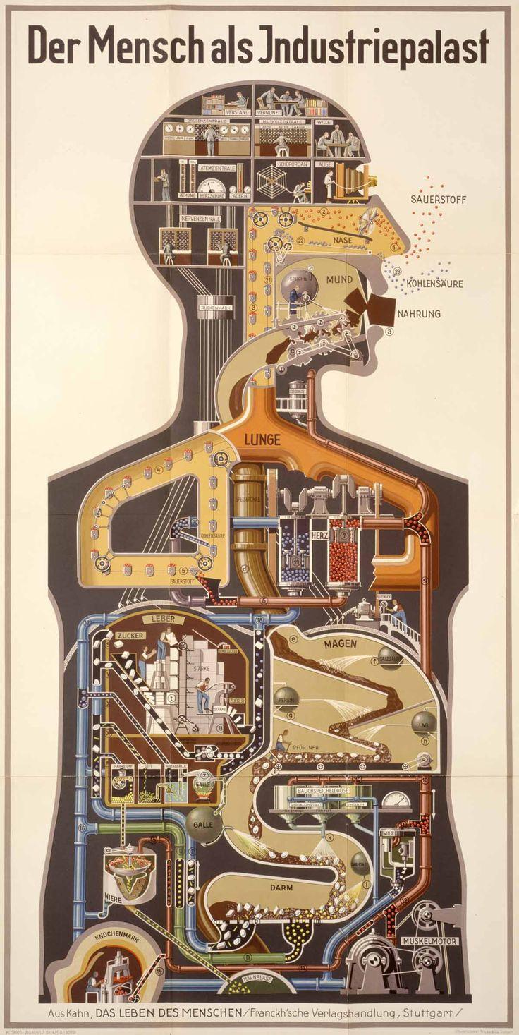 """1926: Man as an Industrial Palace """"Visualização modernista de Kahn do aparelho digestivo e do sistema respiratório como"""" palácio industrial """", realmente uma fábrica de produtos químicos, foi concebido em um período em que a indústria química alemã foi o mais avançado do mundo. '"""
