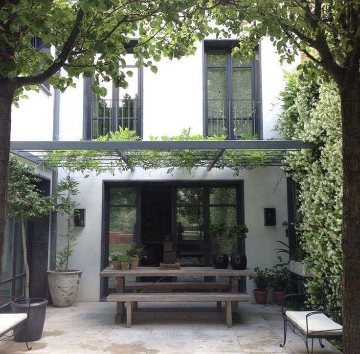 Vines for the veranda